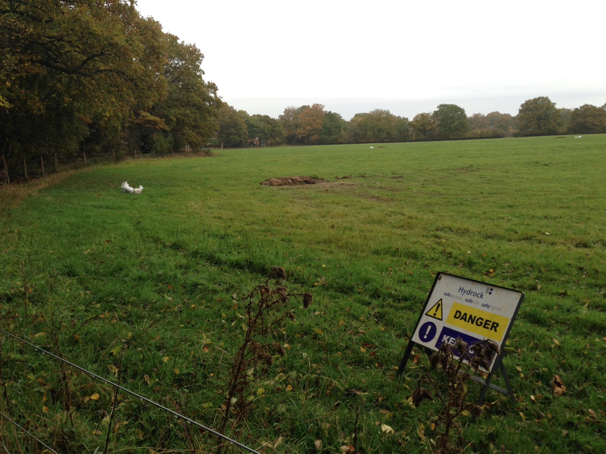 Crest Nicholson Site Horsham Road 28-10-15