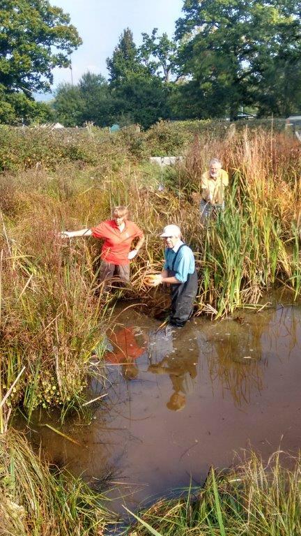Beryl Harvey Conservation Field Cranleigh (3)