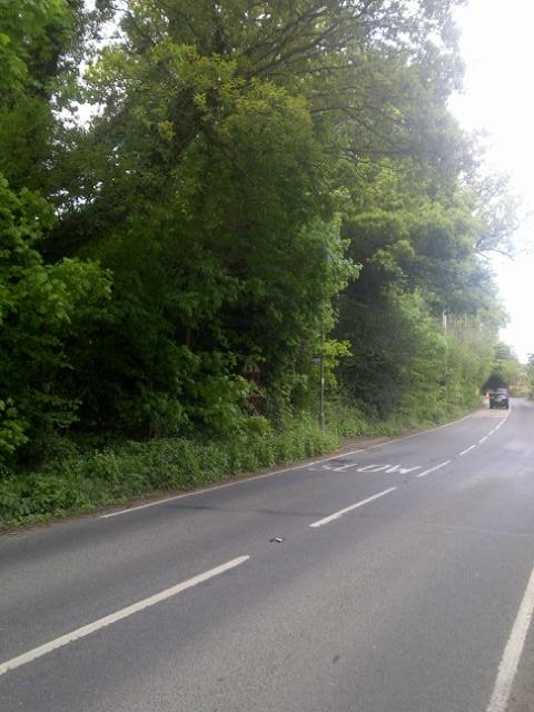 Elmbridge Road