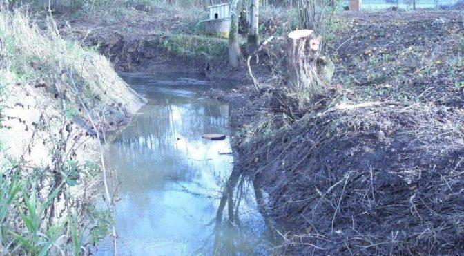 Cranleigh Flood Forum news